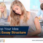 Idea About Essay Structure